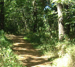 Carver Nature Trail