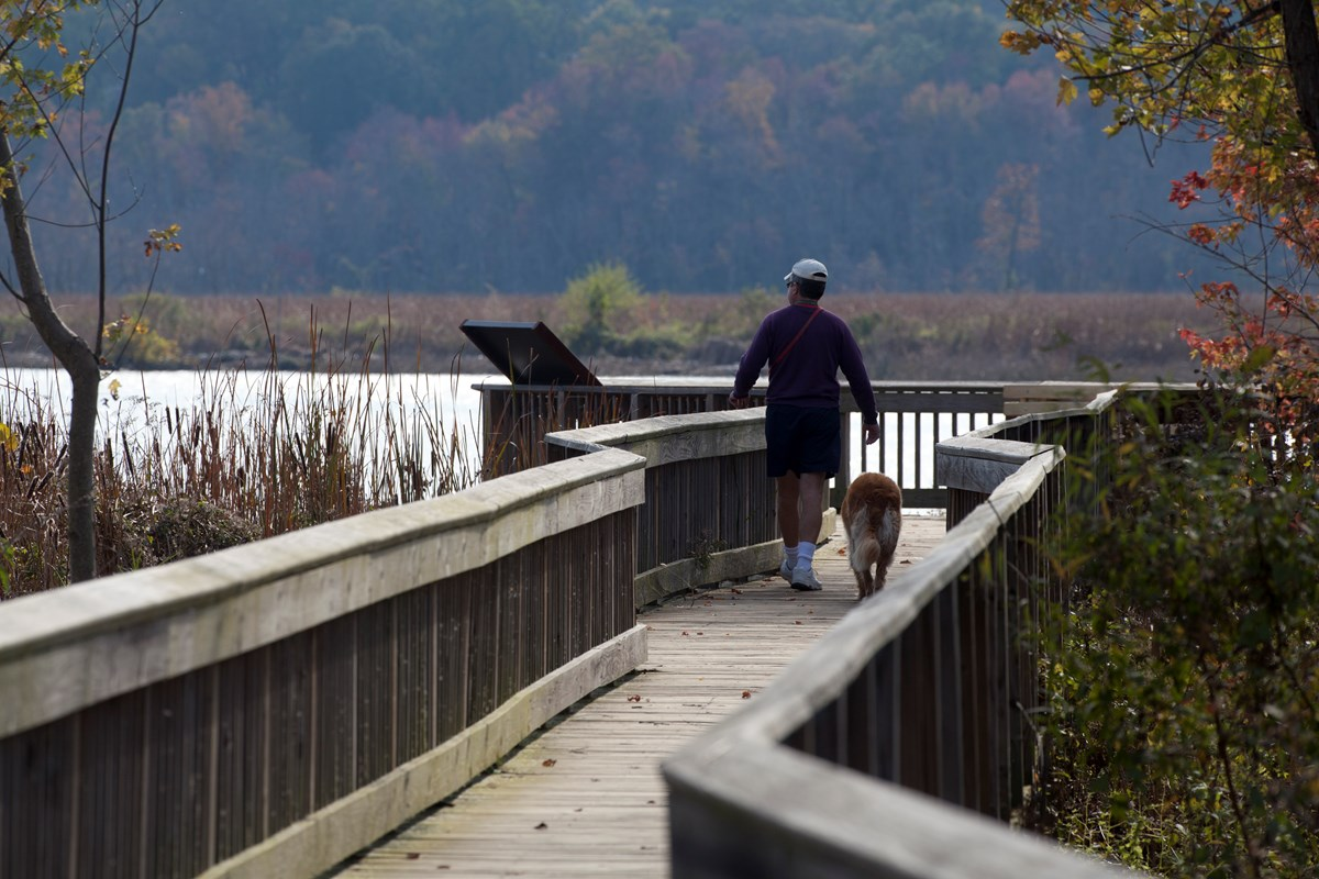 A man and his dog enjoying a walk along Dyke Marsh Wildlife Preserve