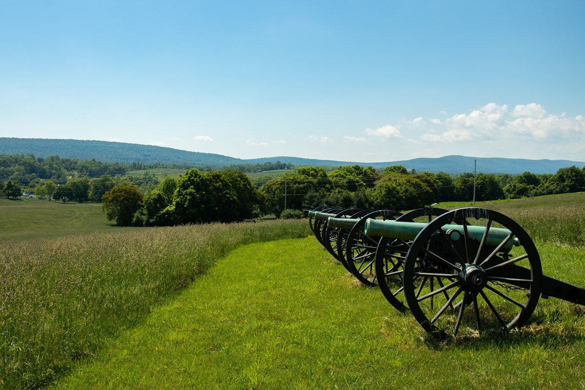 Row of four cannons on Schoolhouse Ridge North. Looking at the cannons from the side.