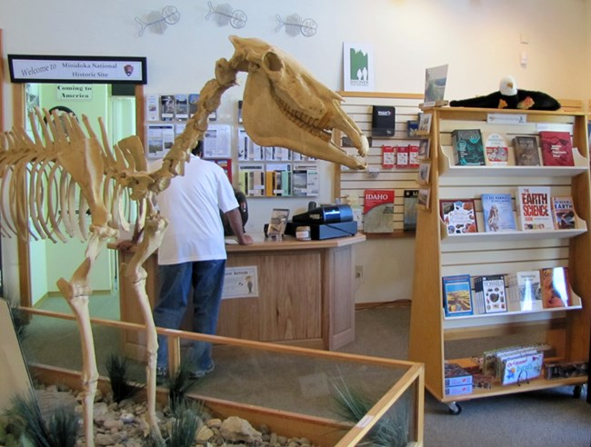 View of the bookstore and the Hagerman Horse.