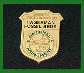Earn a Junior Ranger badge!