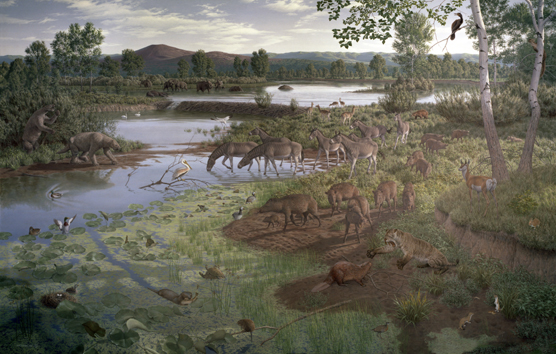 artist's view of Hagerman during the Pliocene Epoch