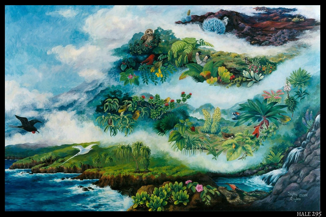 Haleakalā Life Zones and Native Species Mural