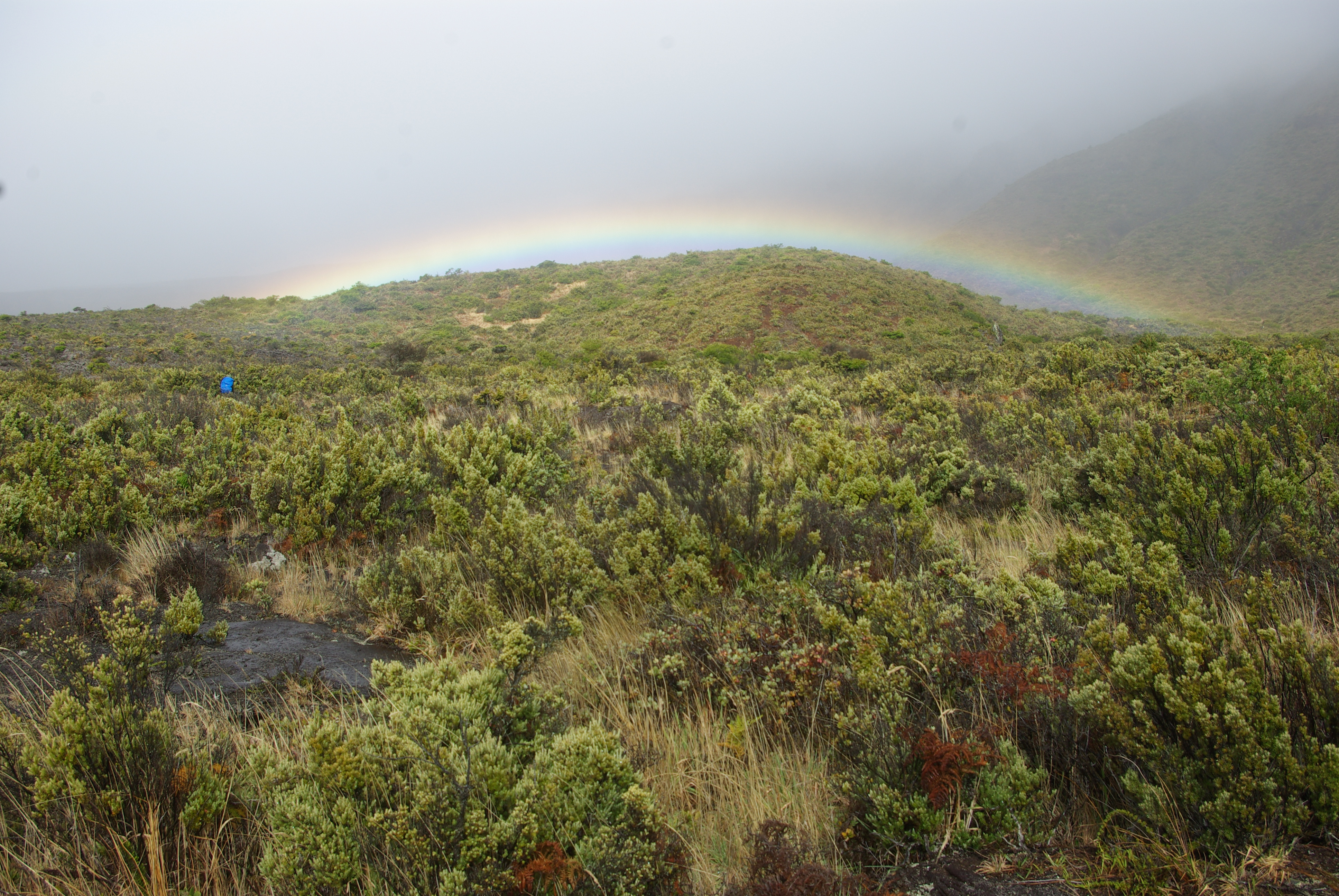 Crater rainbow and shrubland