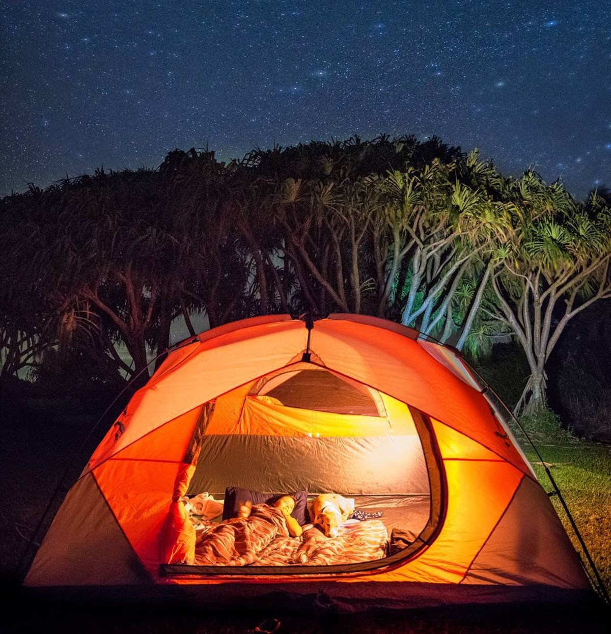Campers enjoying the coastal campground in an orange tent under hala trees.