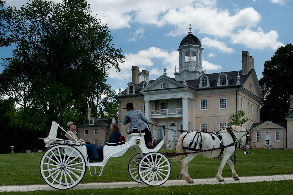 Carriage Rides at Hampton