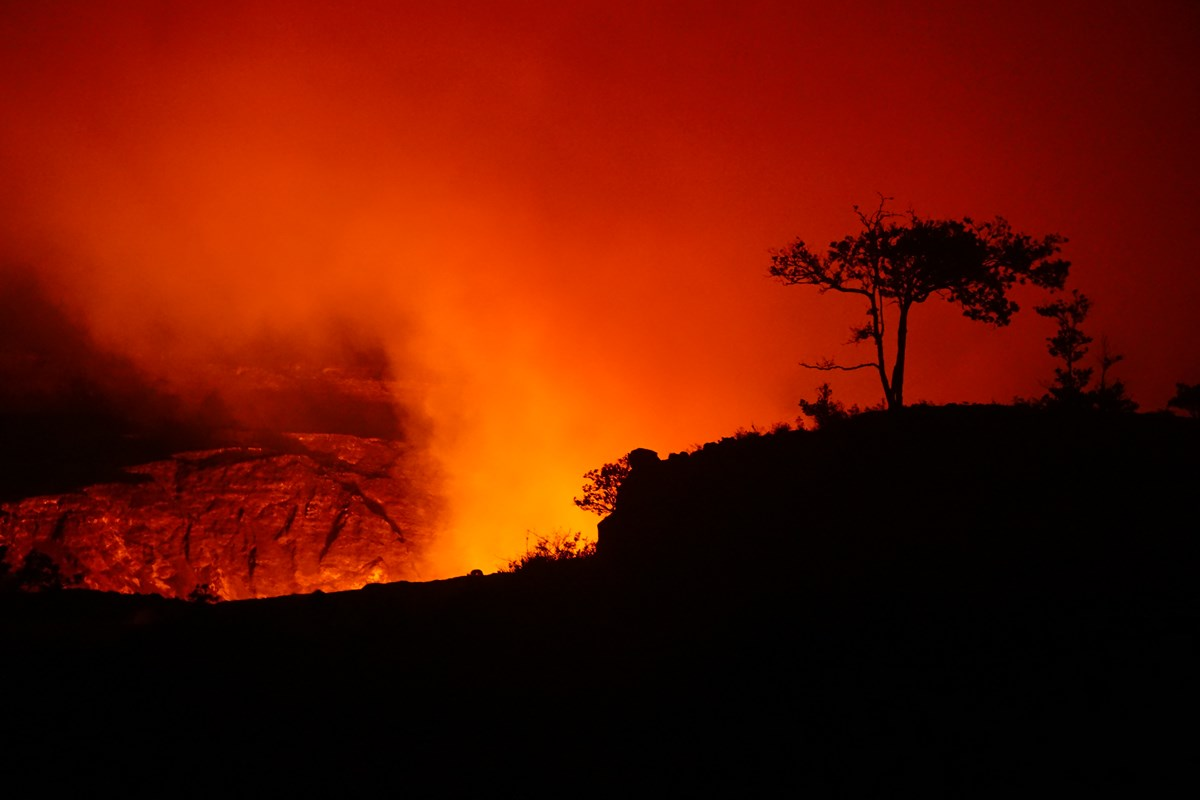 Silhouette of a tree in front of an orange glowing volcanic crater sending out a plume