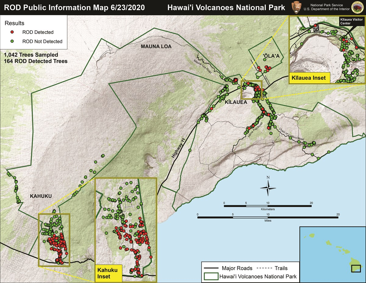Map showing ROD infected trees within Hawaii Volcanoes National Park