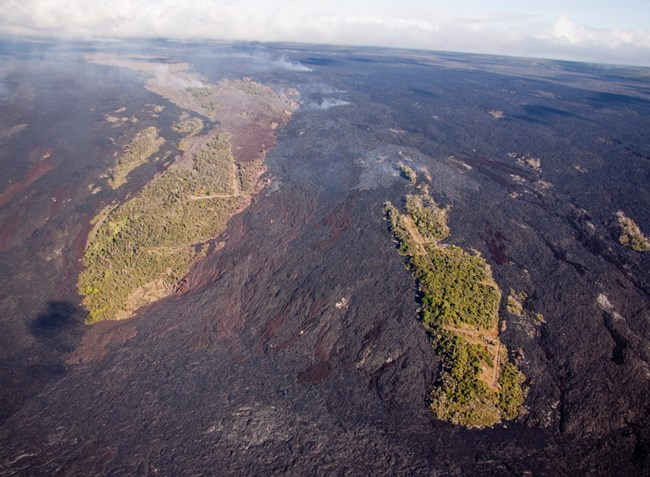 Aerial view of forested kīpuka surrounded by lava flows