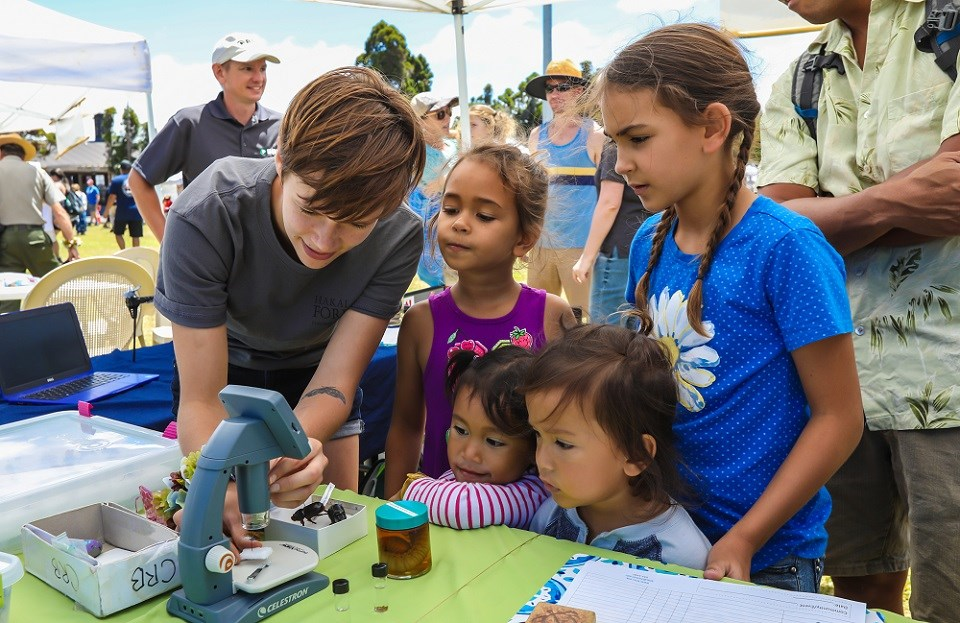 Kids looks at insects with microscope
