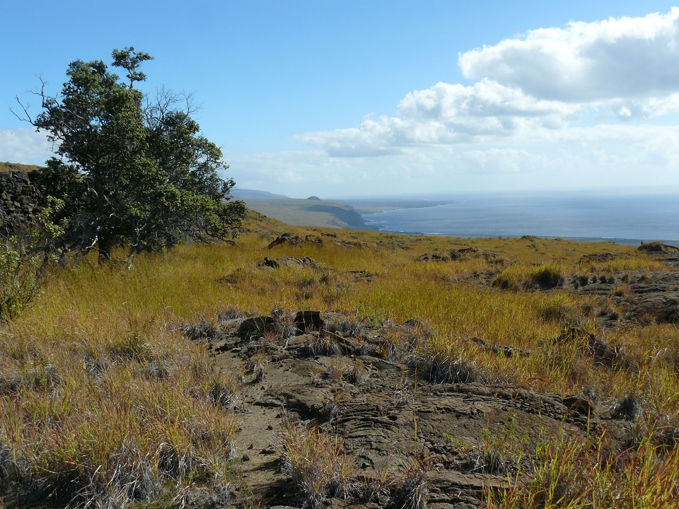 View of ocean, coastal cliffs and dry desert terrain from a trail in Hawaii Volcanoes National Park.