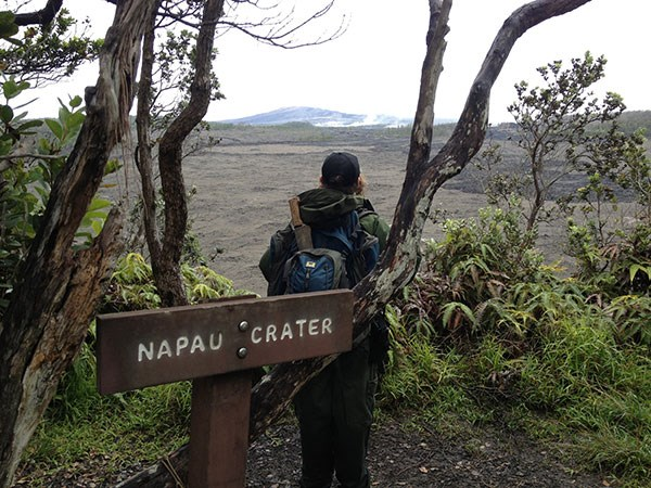 A park ranger gazes across Nāpau Crater in Hawai'i Volcanoes National Park