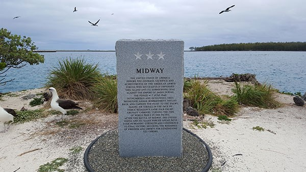 Midway Memorial Marker and Laysan Albatross on Midway Atoll
