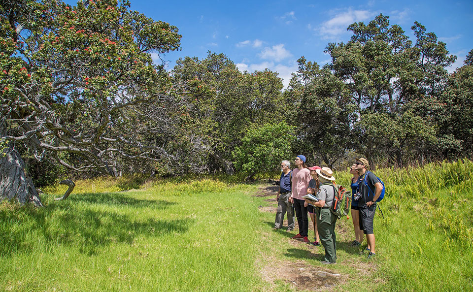 Ranger Wendy leads the guided Hi'iaka & Pele program at the Kahuku Unit