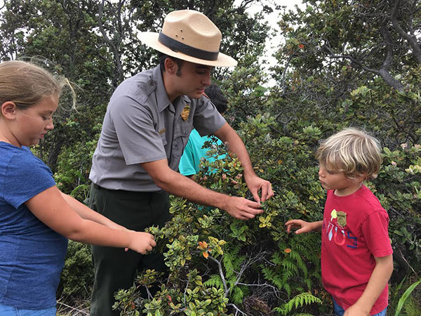 Ranger Noah Gomes explains the important of 'ōhi'a lehua in native forests