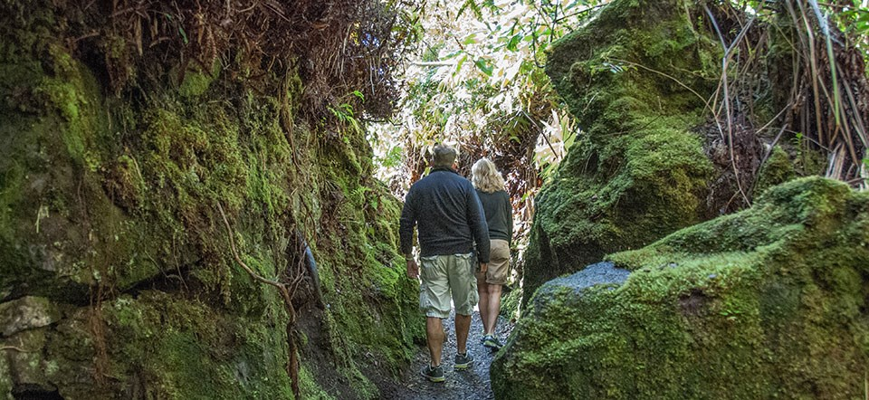 Hiking the Halema'uma'u Trail
