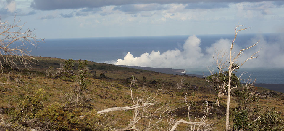 Lava flow ocean entry plume viewed from Chain of Craters Road