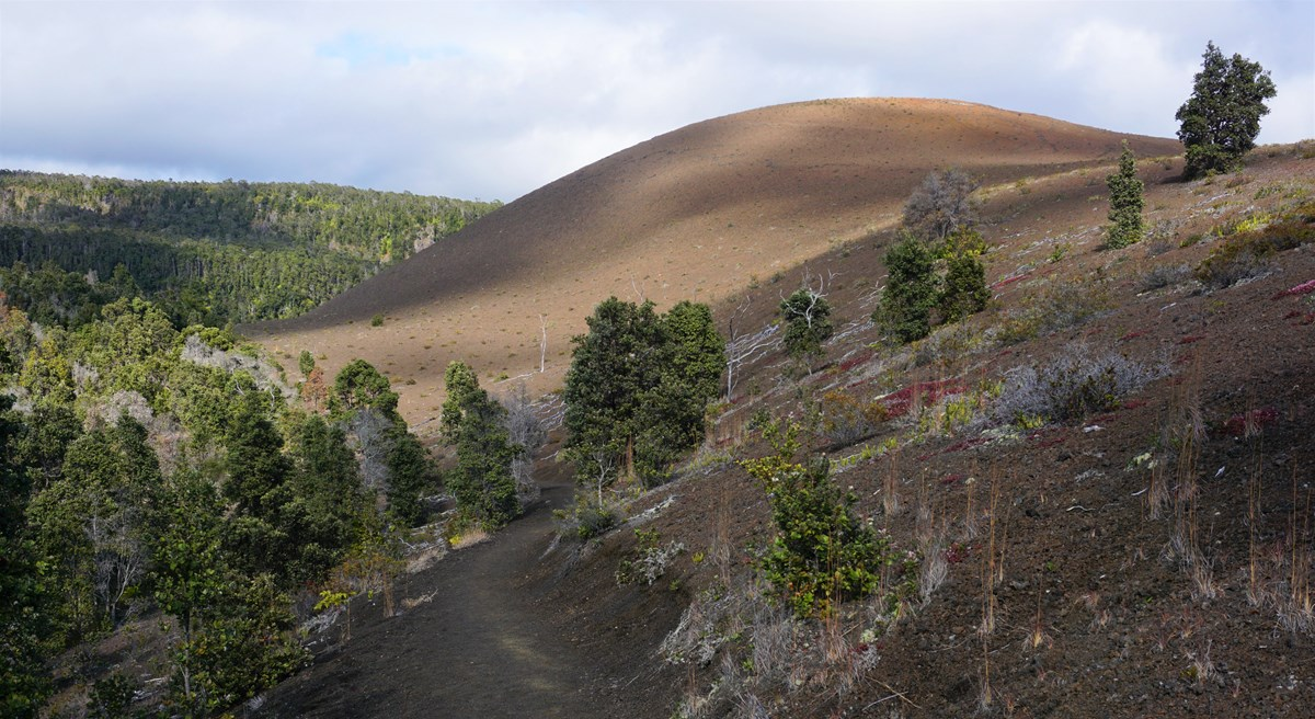 Path next to a volcanic cinder cone