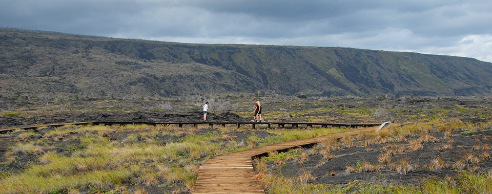 Pu'u Loa Boardwalk Provides Low Impact Petroglyph Viewing