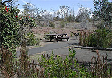 Kulanaokuaiki has 8 individual campsites, each with a picnic table.