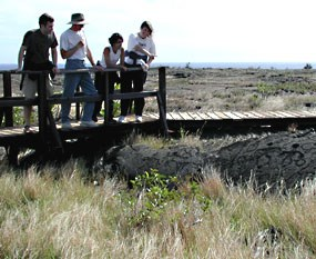 Visitors look at petroglyphs from the boardwalk