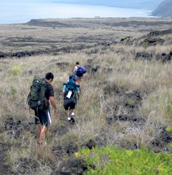 Hikers overlook the coast below while on the Keauhou Trail