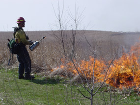 A fire technician ignites a prescribed burn on the priaire in April 2004.