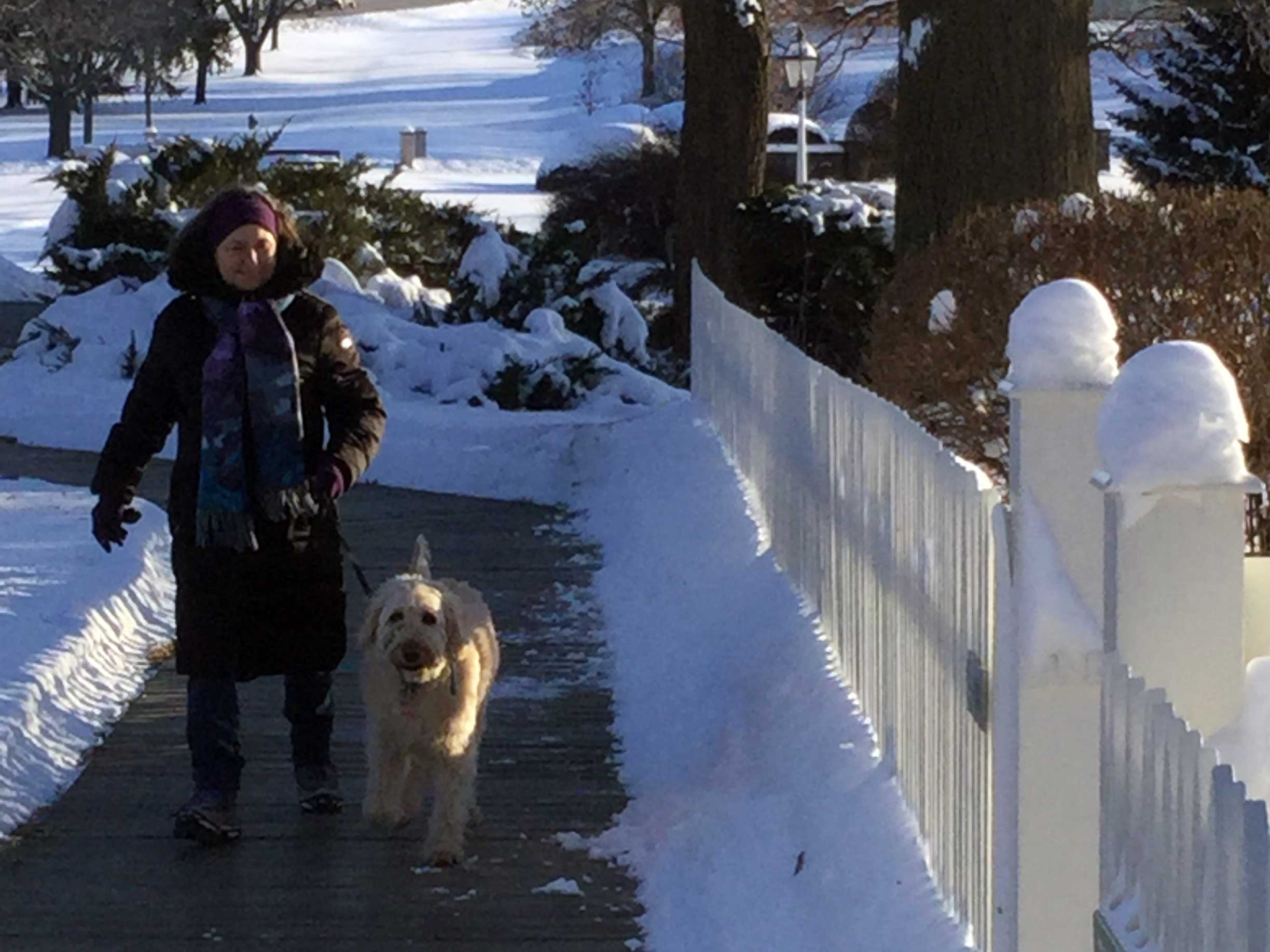 A woman in a winter coat walks her shaggy white dog on a boardwalk in a snowy park.