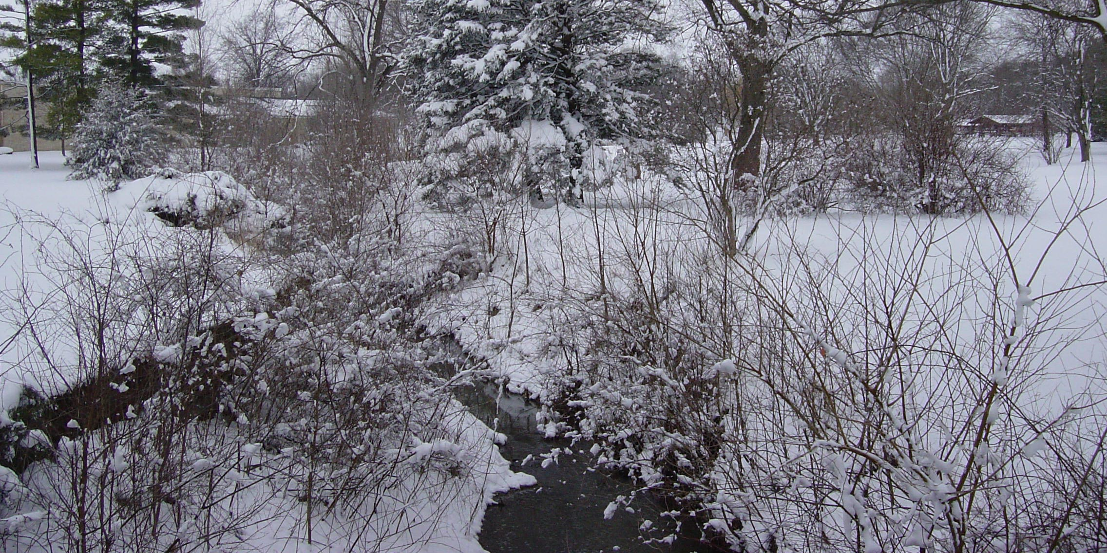 A shallow creek meanders through a snow covered park landscape.