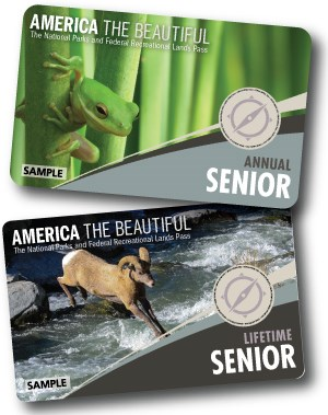 Cards with pictures of bighorn sheep and green frog