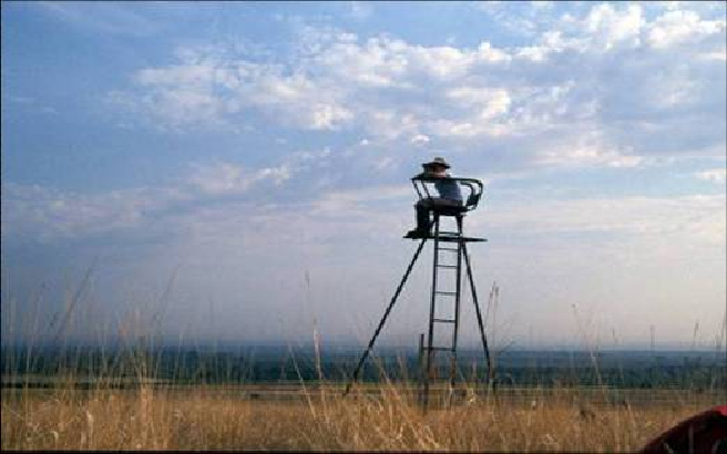 A national park scientist from the Heartland Network monitors birds in a grassland.