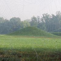 The Central Mound at Mound City Group with a spider web in foreground.