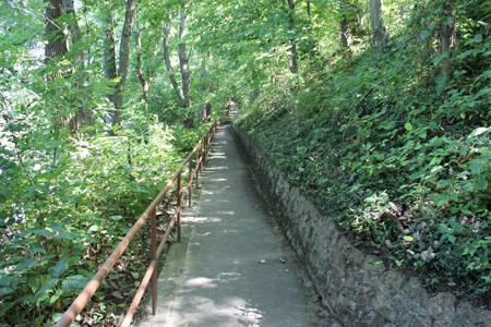 A paved path with green vegetation on both sides and a steel rail on the left