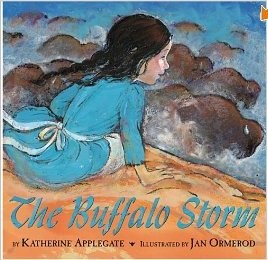 The Buffalo Storm Book