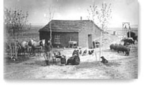 Custer County Homestead