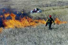 Setting a prescribed burn.