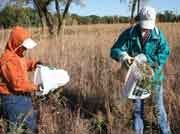 Collecting data on the prairie