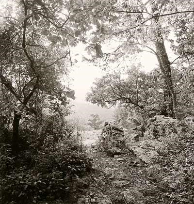 Black and white photo looking out from top of trail at Goat Rock; foliage surrounds three sides with a central opening to faintly see a mountain in the distance.