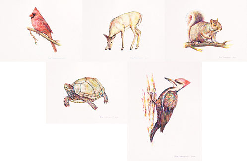Composite of Rod Northcutt animal paintings, cardinal, deer, squirrel, turtle, pileated woodpecker