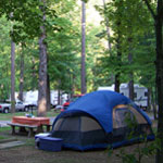 Blue tent in wooded campsite with RVs in the background