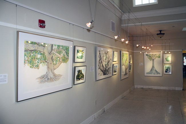 Interior view of the Ozark Cultural Center, the park's art gallery housed in the Ozark Bathhouse. Image shows artwork hanging on the walls with display lighting.