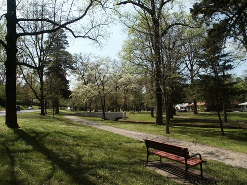 gravel path with green grass and trees on both sides, red park bench in foreground.