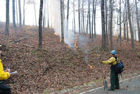 Fire crew performing a prescribed burn on a hill.
