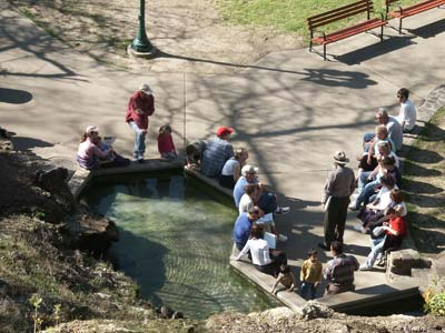 view from hillside looking down on pool where people are sitting listening to park ranger