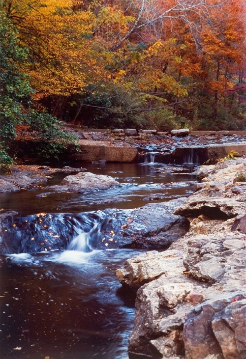 Photo of Gulpha Creek with small fall in the right foreground, brownish rocks on the sides and orange to orange-red colored trees in the background. The creek itself looks dark with highlights showing water movement in the center.