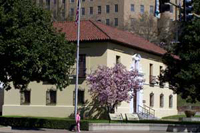 color photo of side view of park headquarters with saucer magnolia tree in bloom