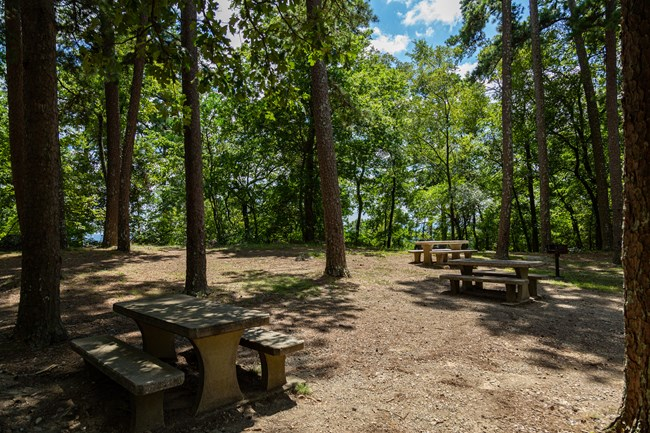 Picnicking area on top of Hot Springs Mountain