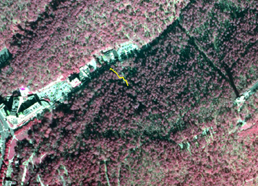 Portion of aerial infrared photo of park with Fountain Trail drawn in yellow.
