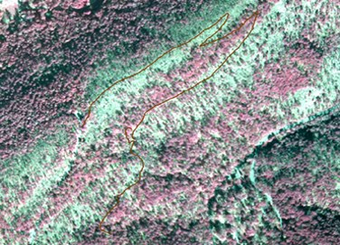 aerial infrared map with Goat Rock trail drawn in red