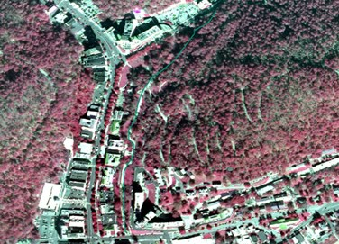 Portion of infrared aerial map with the Grand Promenade drawn in green